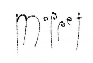 moplogo